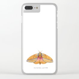 Bisected Honey Locust Moth (Sphingicampa bisecta) Clear iPhone Case