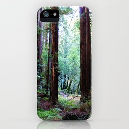 Muir Woods 2 iPhone Case