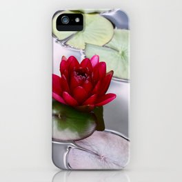 Dark Red Water Lily iPhone Case