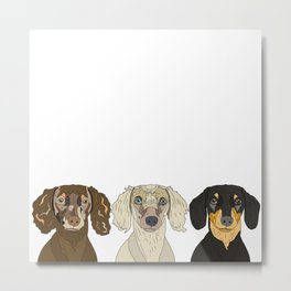 Triple Doxies Metal Print