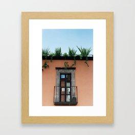 Vista Framed Art Print