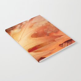 AFE Autumn Leaves, Nature Photography Notebook