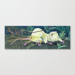 Moonrat Canvas Print