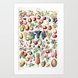 Adolphe Millot - Fruits pour tous - French vintage poster Art Print