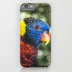 Lorikeet Slim Case iPhone 6s