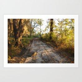 Savannah Morning Road Art Print