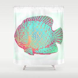 Sunfish Colors Shower Curtain