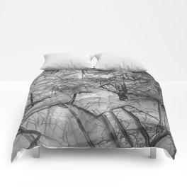 Charcoal Comforters