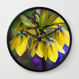 Crown imperial flower (yellow, blue, orange) Wall Clock