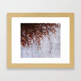 wall of tears Framed Art Print