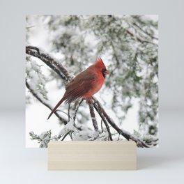 Wet Snow Cardinal (square) Mini Art Print