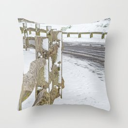 Winters day. Throw Pillow