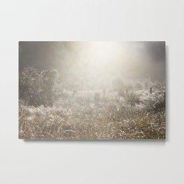 Country Mist Metal Print