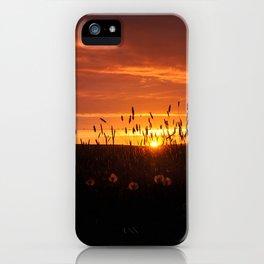 Midnight Sun. iPhone Case