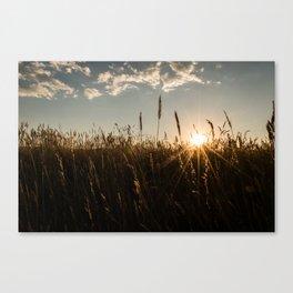 Wyoming Wheat Field Sunset Canvas Print