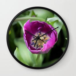 Longwood Gardens Orchid Extravaganza 30 Wall Clock