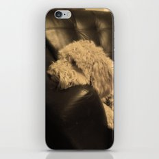 Max iPhone & iPod Skin