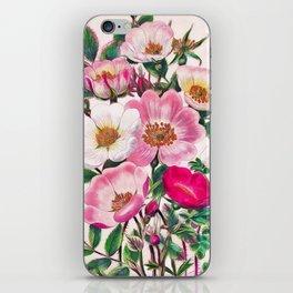 Wild roses iPhone Skin