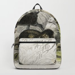 Wild Boar Collared Peccary Chinese Sow Capibara and Babyroussa from A history of the earth and anima Backpack