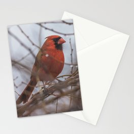 Rainy day cardinal Stationery Cards