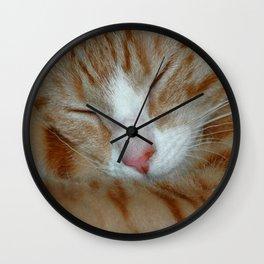 Ginger Kitten Sleeping Wall Clock