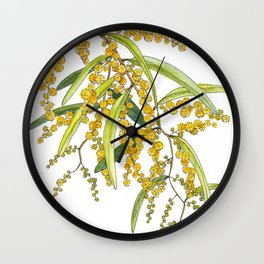Australian Wattle Flower, Illustration Wall Clock