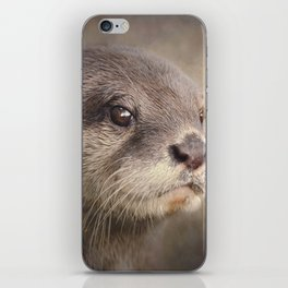 Otterly gorgeous!! iPhone Skin