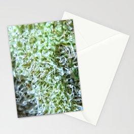 GG#4 Stationery Cards