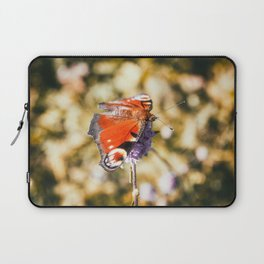 Beautiful european orange Peacock butterfly on mauve flower in autumn Laptop Sleeve
