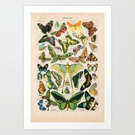 Vintage Butterfly Print Art Print