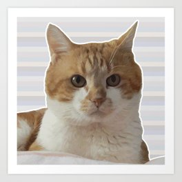 Red cat on a striped background. Art Print