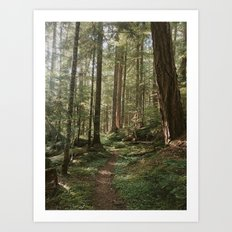 Wonderland Forest Trail Art Print