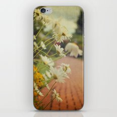 Summer Daisies iPhone & iPod Skin