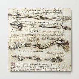 Leonardo Da Vinci human body sketches - arms Metal Print