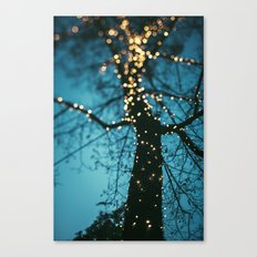 Bokeh tree. Canvas Print