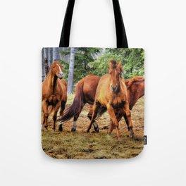 Horse Play Tote Bag