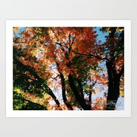 Fall Day Long Art Print