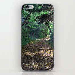 Fall's Welcome iPhone Skin