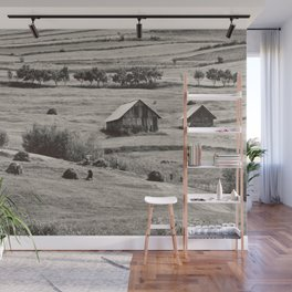 Romania... I miss you Wall Mural