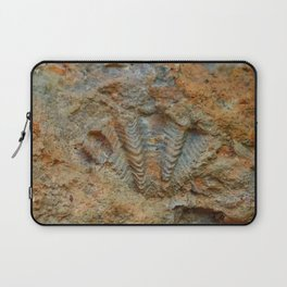Shell Fossil Laptop Sleeve