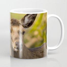 Deer cow looks around the corner Coffee Mug