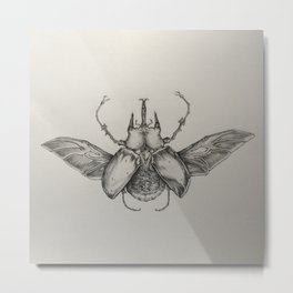Elephant Beetle Pencil Drawing Metal Print