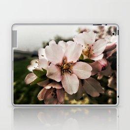Flor de Almendro Laptop & iPad Skin