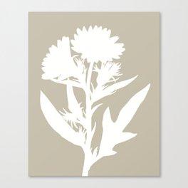 Silphium in Dove Gray - Original Floral Botanical Papercut Design Canvas Print