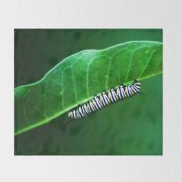 Monarch Caterpillar Throw Blanket