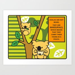 Facts You Should Know: Koalas Art Print