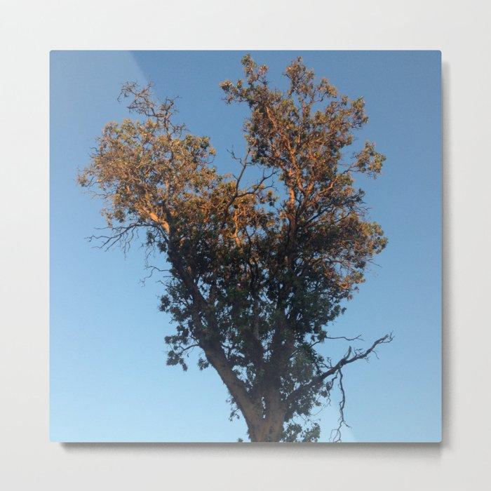 Heart tree gold light Metal Print