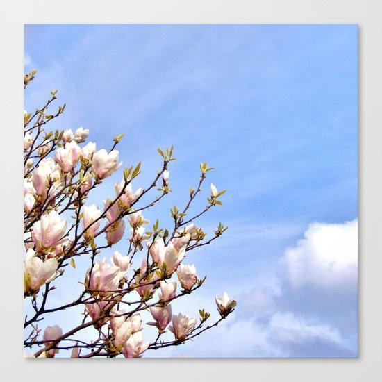 Magnolia In The Sky Canvas Print