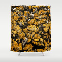 Gold Stone Mold Shower Curtain