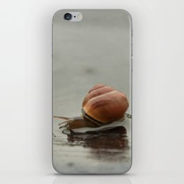 Caracol II iPhone Skin